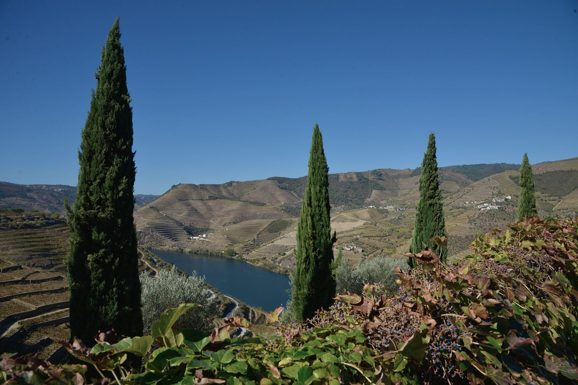 Douro - Rondreis Portugal
